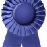 1294754_blue_ribbon